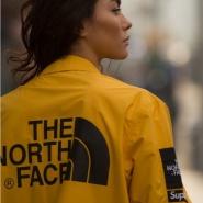 Moosejaw:精选 The North Face、Marmot 等品牌男女夹克 低至$100