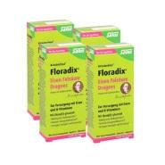 Salus Floradix 维生素B族补血补铁片剂 84片*4