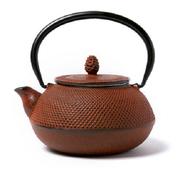 包郵!【松屋百貨】OIGEN 及源鑄造 南部鐵器茶壺 0.6L 橙褐色
