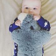 寶寶伴睡萌寵|Flatout Bear 純羊皮毛一體手工毛絨扁扁熊 考拉限量款 大號 28cm*24cm