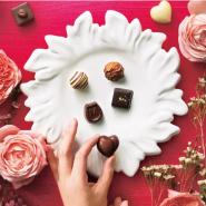 Belle Maison:千趣会 2018情人节巧克力精选
