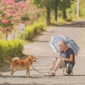 迎接櫻花季!春秋旅游 上海-日本九州佐賀 6日自由行往返含稅機票+西瓜卡
