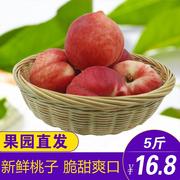 【天貓水果】現摘現發水蜜桃 5斤包郵