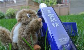 【晒礼品】两次活动奖品:DDP小众唇膏与雪肌精乳液