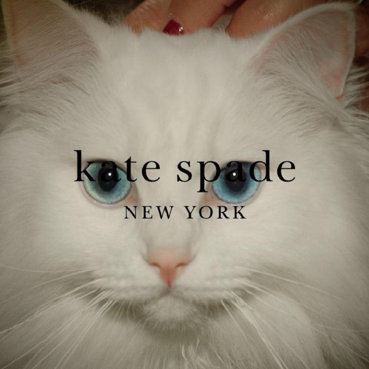 kate spade 美国官网:折扣区服饰鞋包