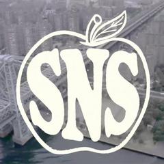 Sneakersnstuff官网:精选休闲服饰北脸、Nike、Swoosh卫衣、adidas