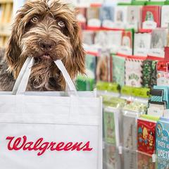 Walgreens:今日活动更新