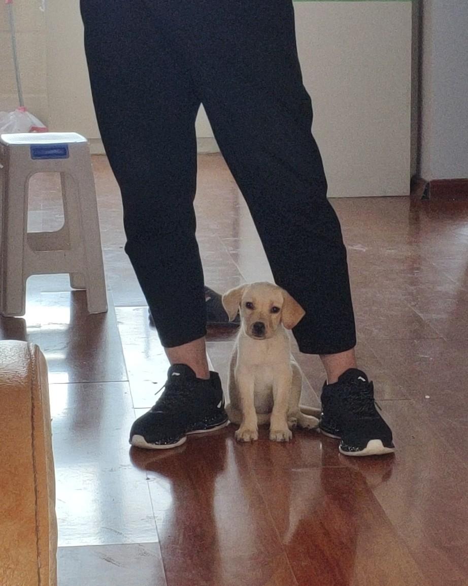 秋膘打卡✔  11月有了我自己的小爱宠,今天给它拍照发现,除