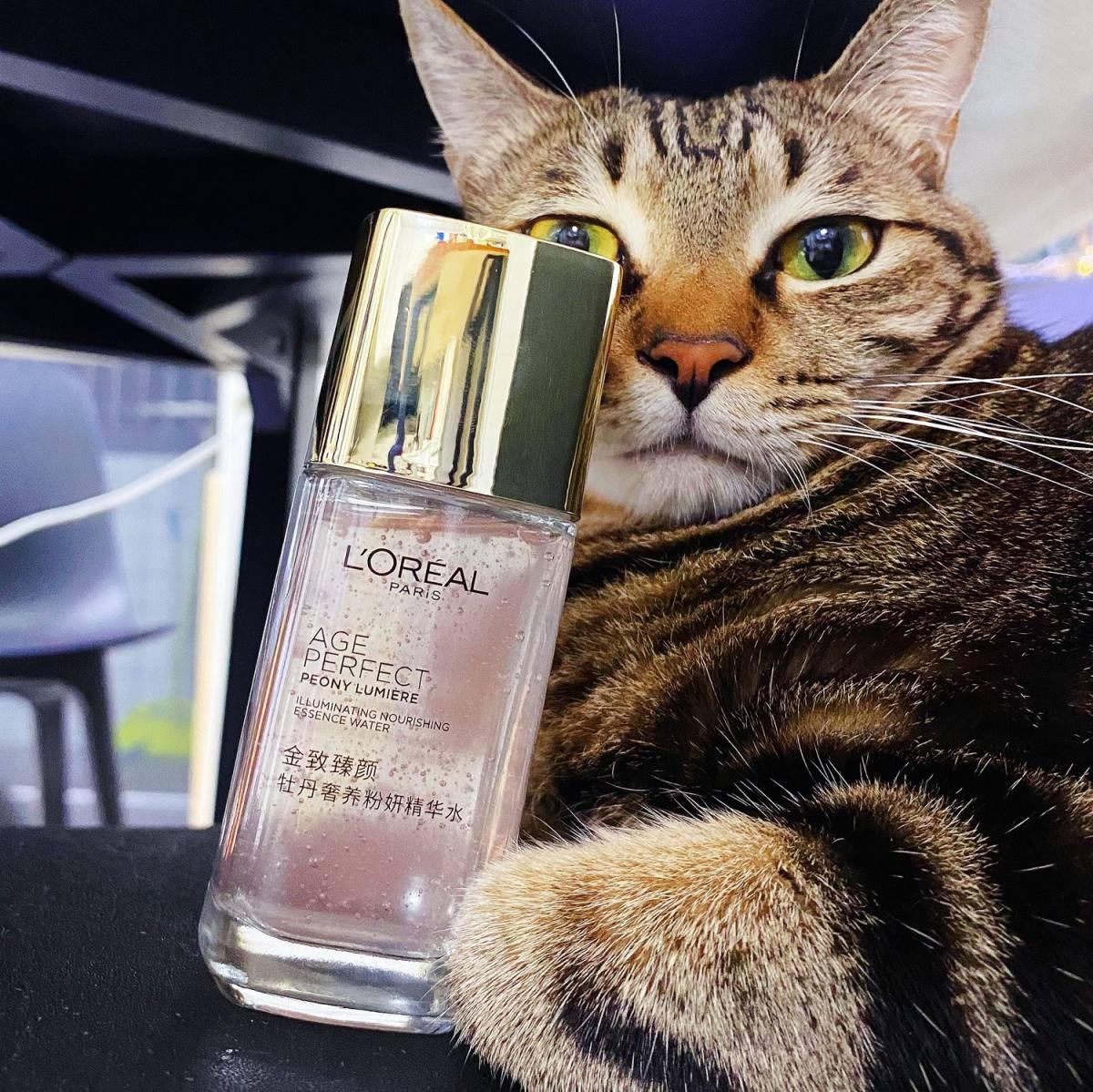 推荐这款欧莱雅的粉妍精华水 这个颜值真的绝了好吗!! 顺手薅