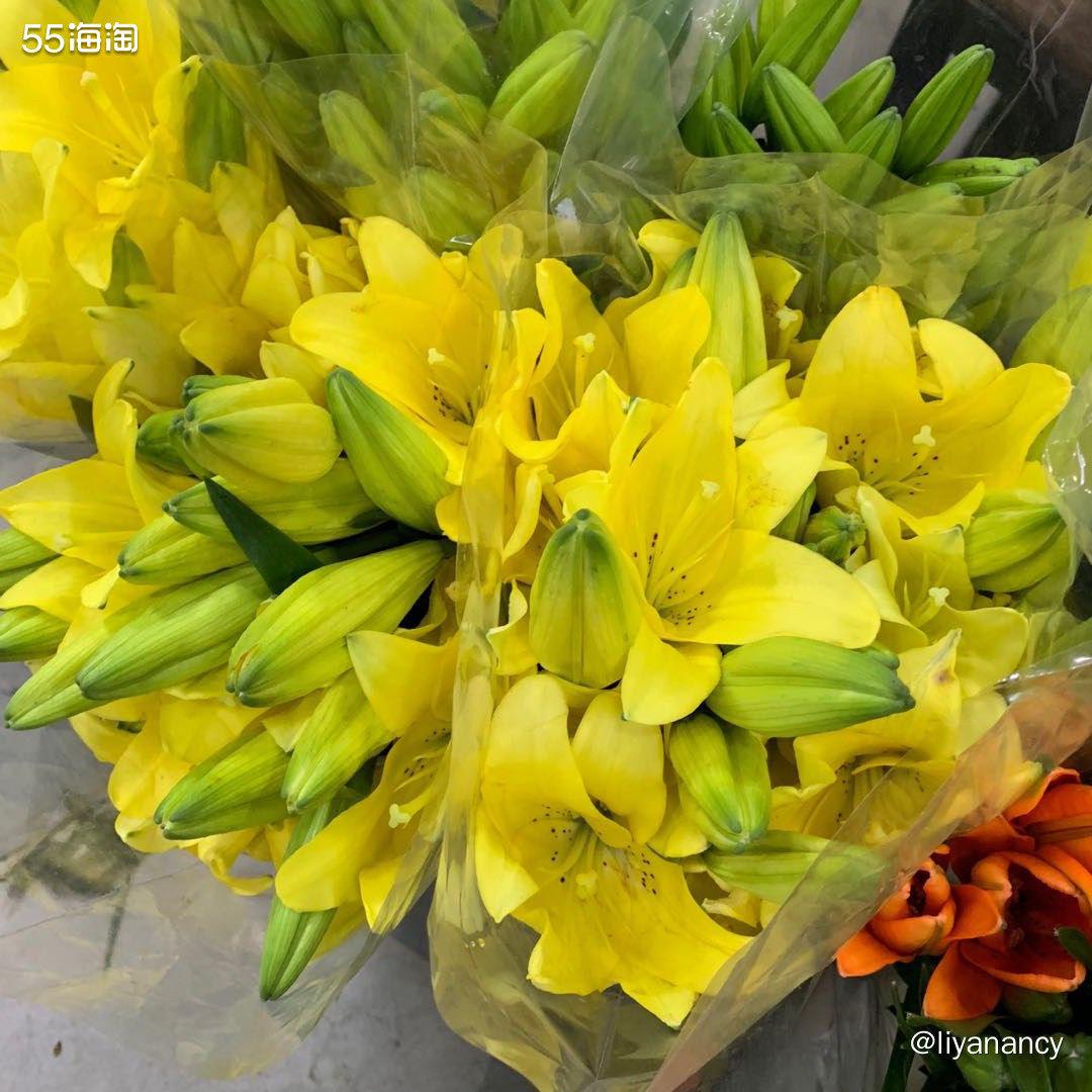 春节的鲜花  🍇同事家也在疫情严重的北方,过年也是属于中高