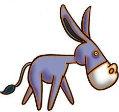 大芳的小毛驴