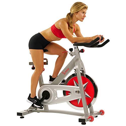 Sunny 专业室内健身自行车