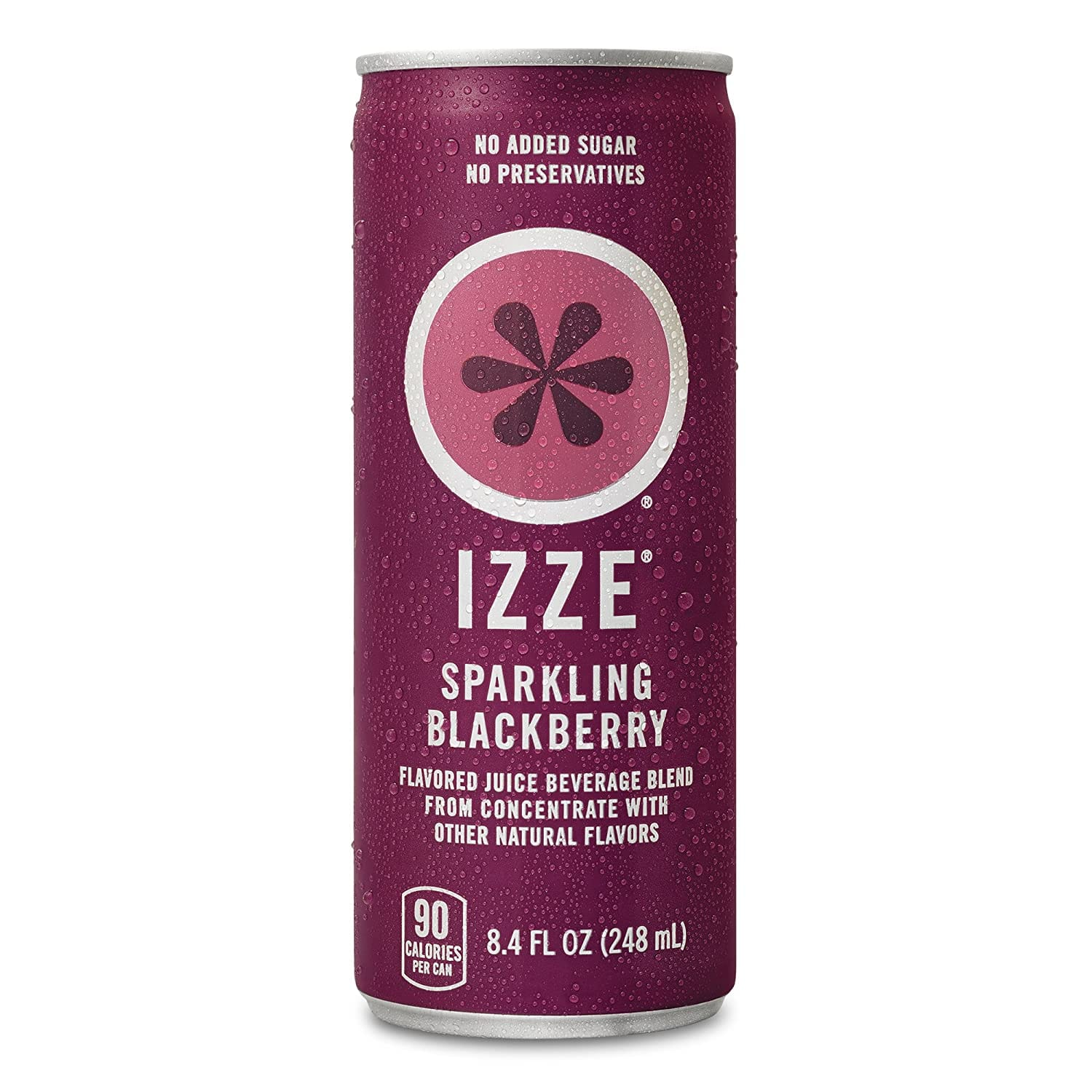 24-Count of 8.4-Oz IZZE Sparkling Juice (Blackberry)