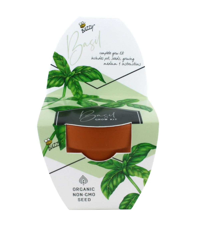 Buzzy Spring Terra Cotta Pot Herb Grow Kits (Various)