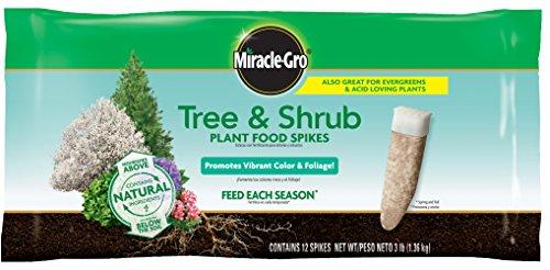 树木和灌木化肥棒,无需忍受传统臭臭化肥