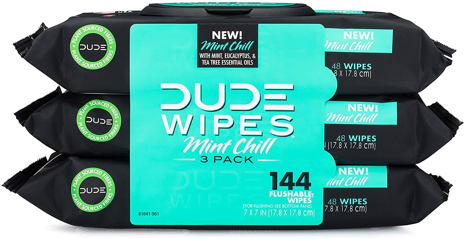 Dude Wipes Flushable Wet Wipes 48-Count Dispenser 3-Pack