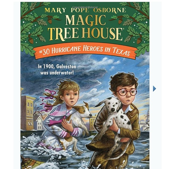 Amazon:《Magic Tree House 神奇的树屋》丛书