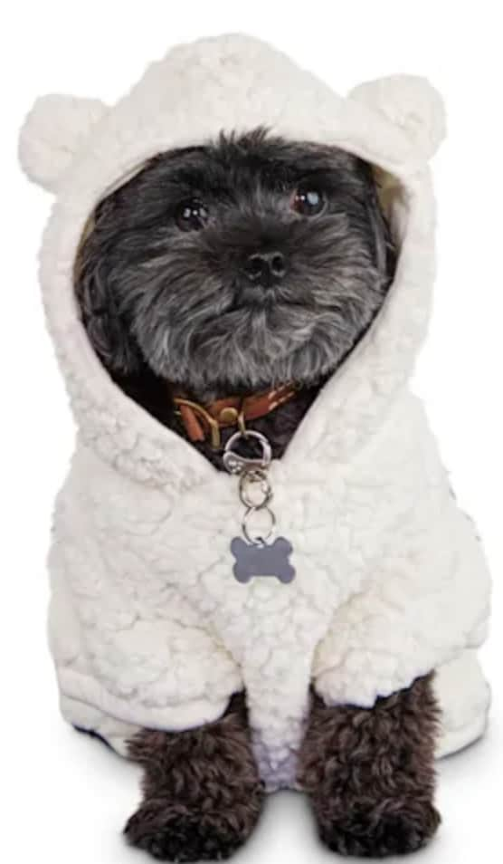 Cold Weather Apparel & Beds at Petco
