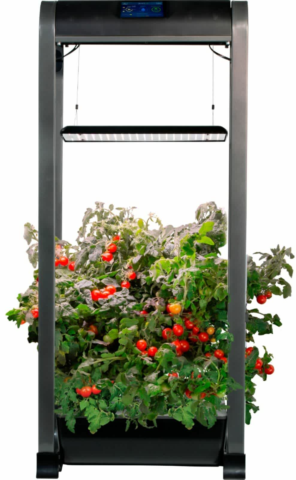 AeroGarden Farm 12 XL
