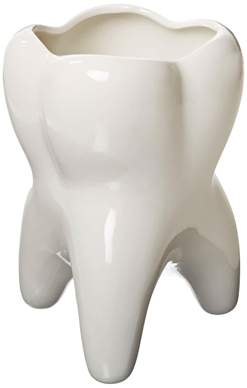 Practicon Molar Vase