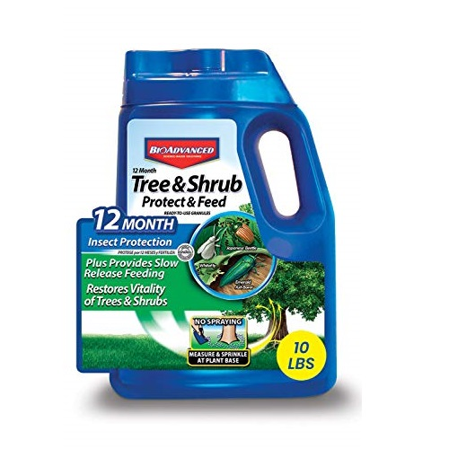 BIOADVANCED 701910A 12-Month Tree and Shrub Protect and Feed Insect Killer and Fertilizer, 10-Pound, Granules